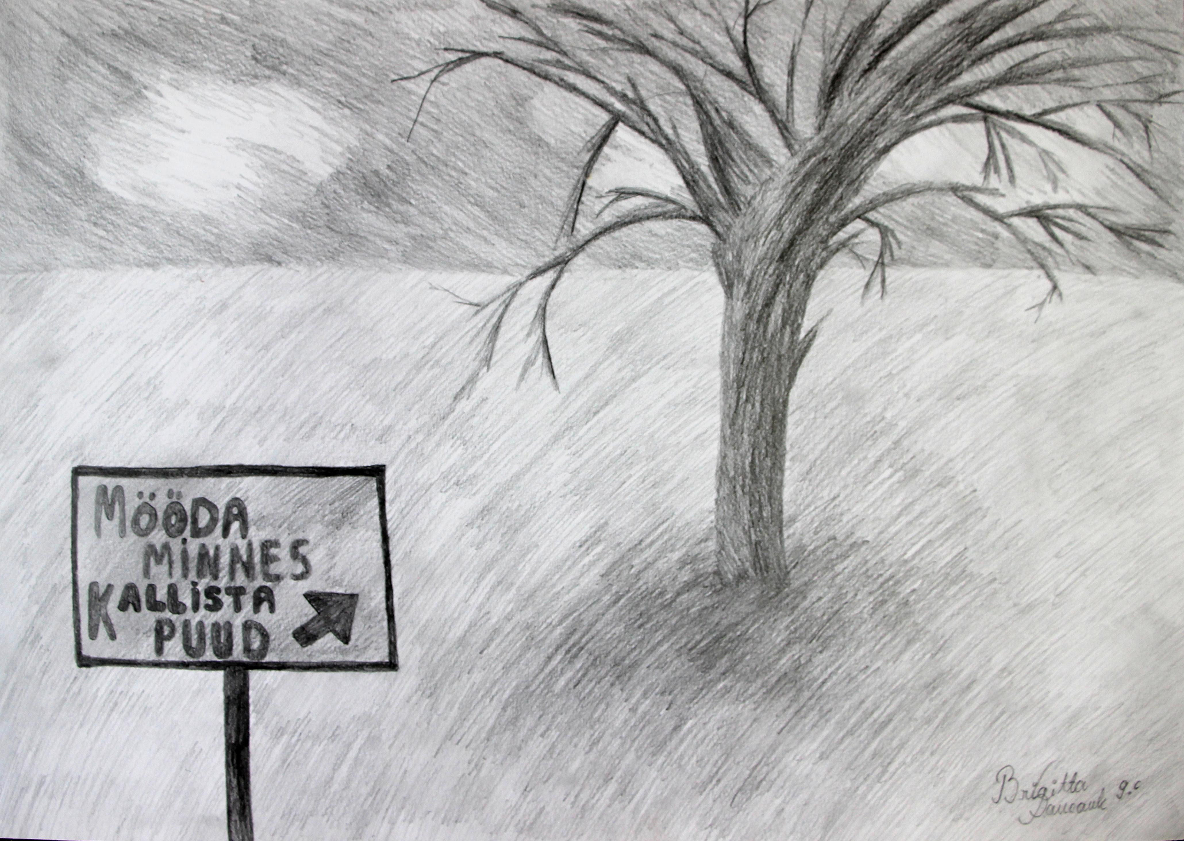 """""""Mööda minnes kallista puud"""""""