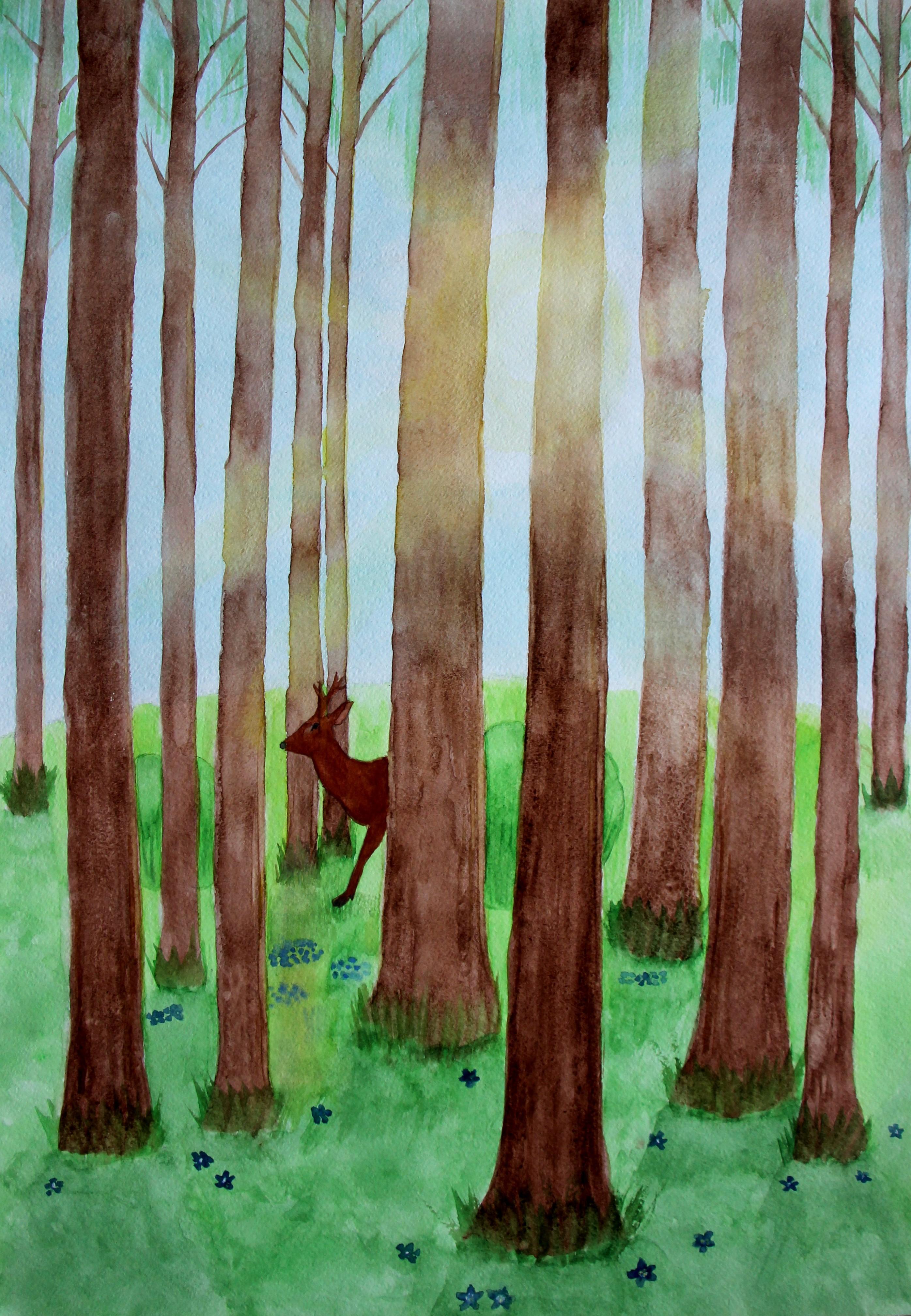 """""""Päikeseline metsamaastik"""""""