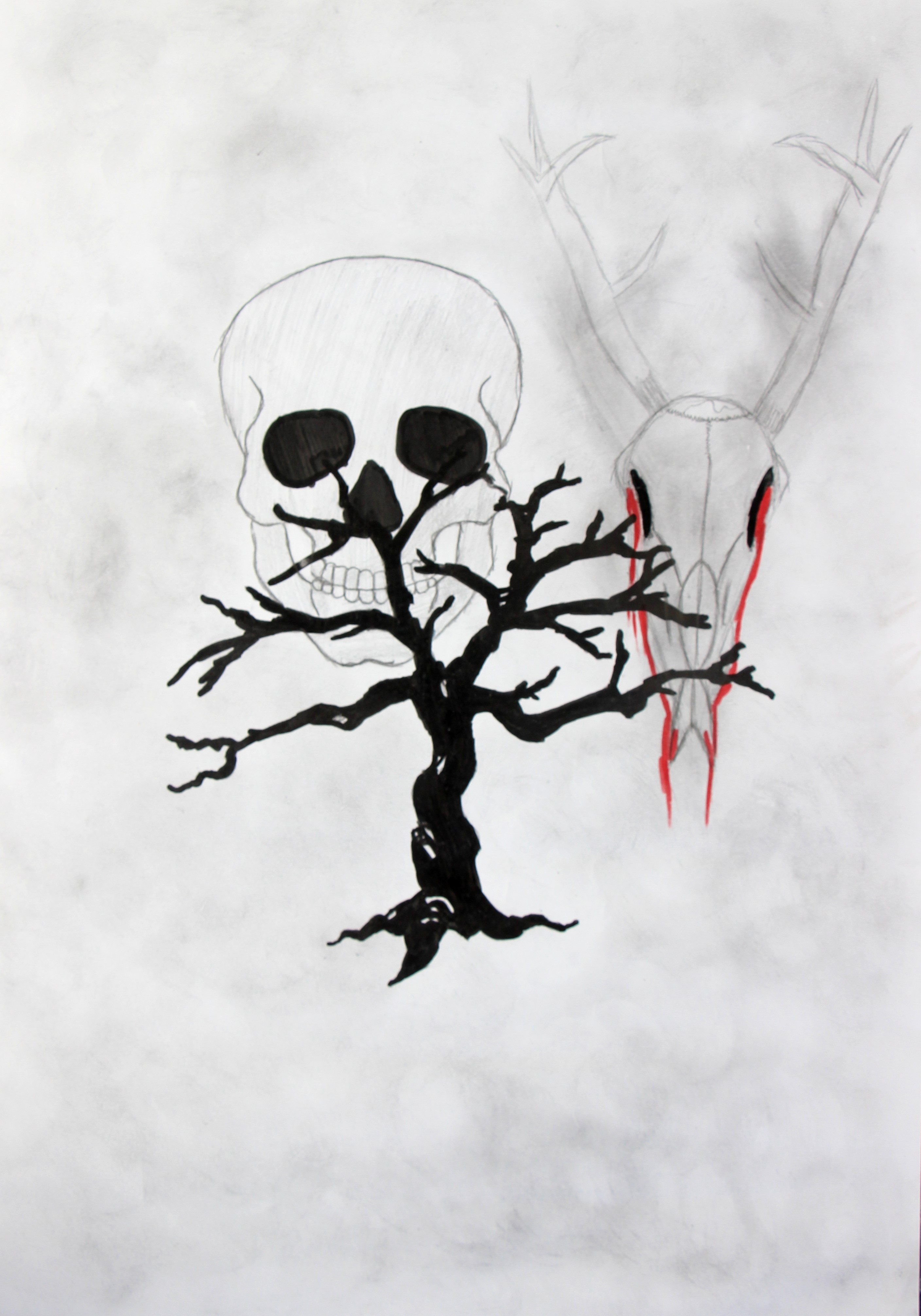 """Metsa surma tagajärjed"""