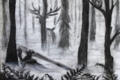 """""""Uduse metsa saladus"""""""