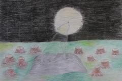 """""""Võrratud metsasalud"""""""