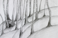 """""""Metsa kaitse"""""""